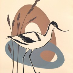 Birds sing their rites of spring exhibition-Kate Heiss