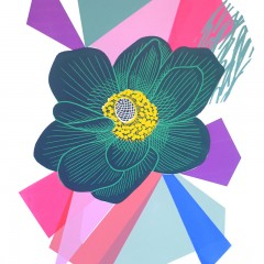 kate-heiss-anemone-series 1-floral-monoprint-floral-prints-colour-curwen-studio