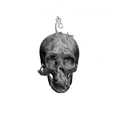 A limited edition piece by artist Magnus Gjoen of a grey skull