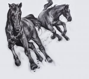 Patsy Mcarthur monochrome charcoal drawn horses galloping side by side