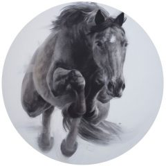 Figurative artist Patsy Mcarthur. Monochrome charcoal drawn horse on circle paper jumping through the air