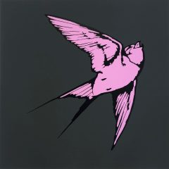 art work of pink hummingbird on grey background